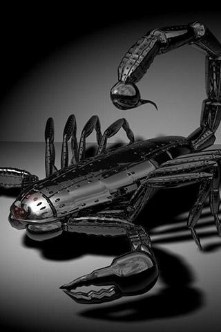Красивые обои и картинки скорпионов на телефон на заставку 3