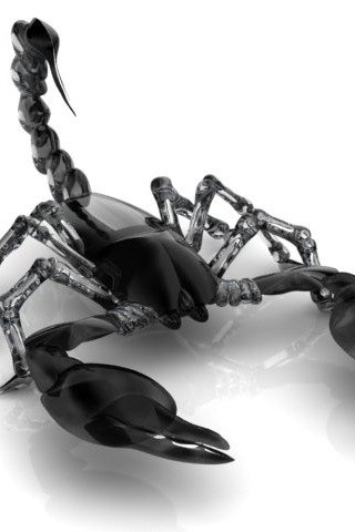 Красивые обои и картинки скорпионов на телефон на заставку 7