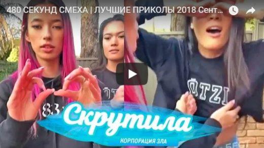 Лучшие видео приколы до слез, за 2018 год - топовая подборка №135
