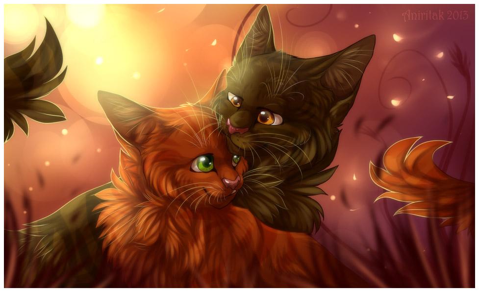Необычные и красивые картинки Коты Воители - подборка 20 штук 10
