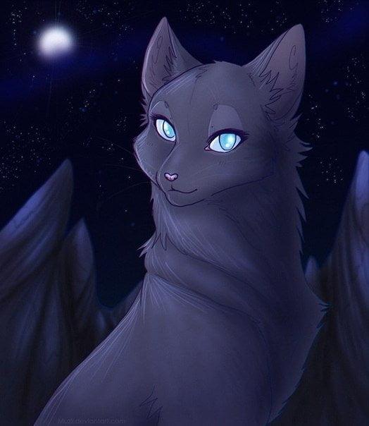 Необычные и красивые картинки Коты Воители - подборка 20 штук 12