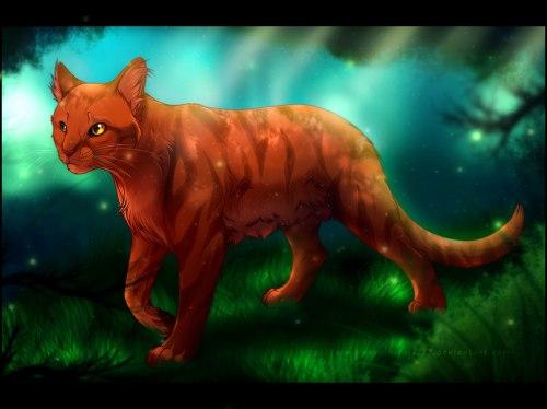 Необычные и красивые картинки Коты Воители - подборка 20 штук 18