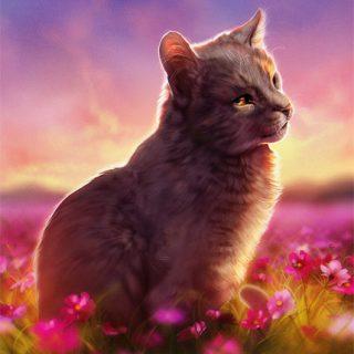 Необычные и красивые картинки Коты Воители - подборка 20 штук 19