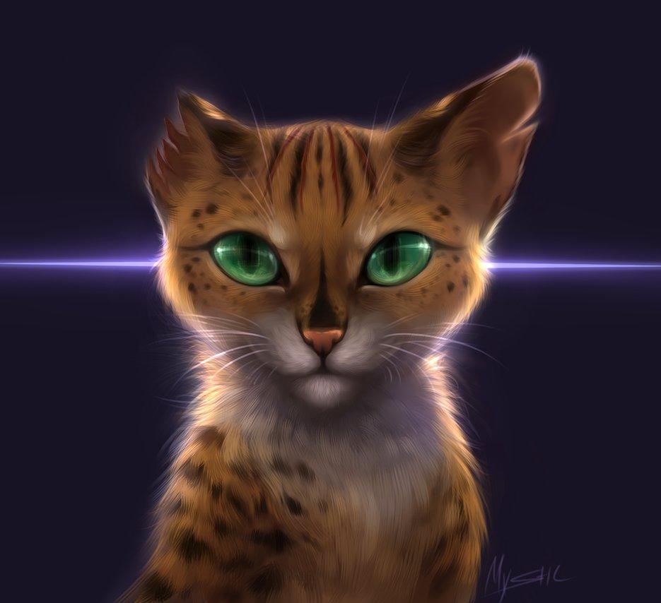 Необычные и красивые картинки Коты Воители - подборка 20 штук 3