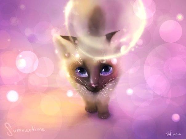 Необычные и красивые картинки Коты Воители - подборка 20 штук 4