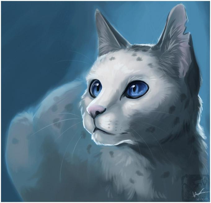 Необычные и красивые картинки Коты Воители - подборка 20 штук 5
