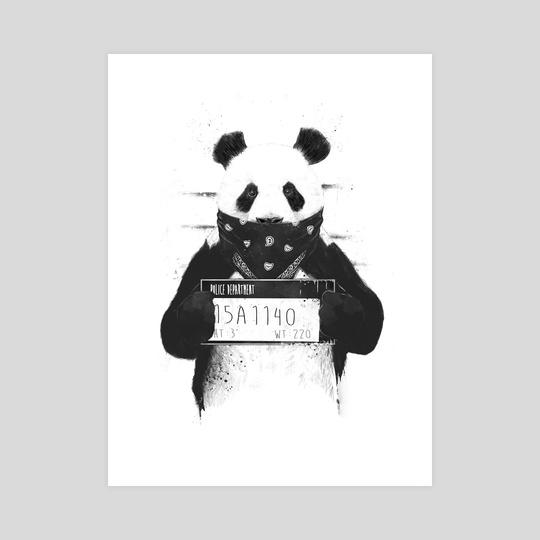 Панды очень красивые и прикольные картинки, арты, фото - подборка 16