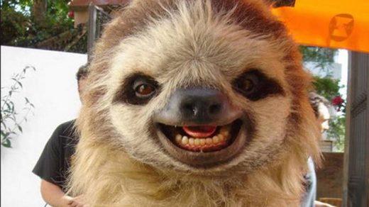 Прикольные и смешные картинки улыбки - забавная подборка 14