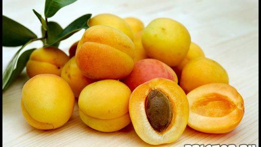 Рейтинг самых полезных фруктов для добавления в меню 4