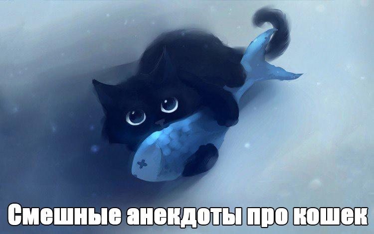 Смешные анекдоты про кошек, котят, котов - веселая подборка №122 заставка