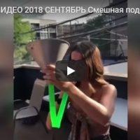 Смешные видео ролики 2018 сентябрь - лучшая подборка №133