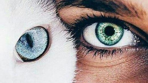 Удивительные картинки глаза девушек на аву и аватарку - подборка 14