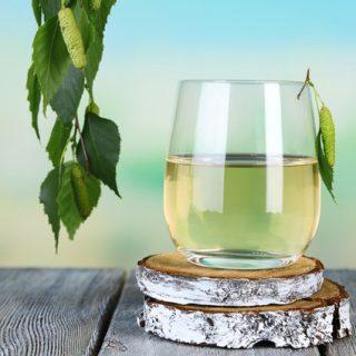 Как хранить березовый сок в домашних условиях - лучшие способы 2
