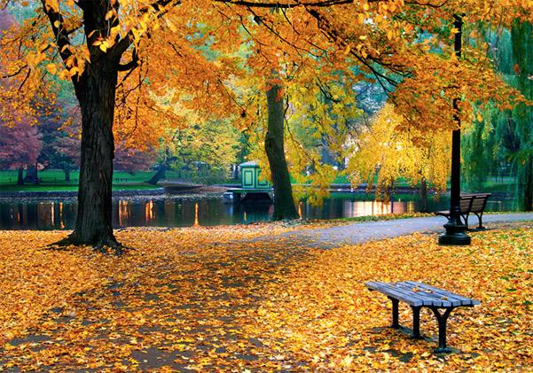 Красивые и удивительные картинки осень в парке - подборка фото 6