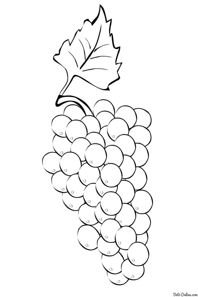 Красивые картинки для раскраски фрукты и овощи - подборка 14