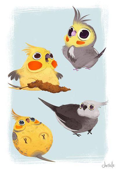 Красивые картинки и рисунки попугаев для срисовки для детей 10