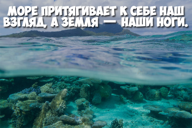 Красивые статусы и цитаты о море. Лучшие цитаты и фразы о море 10