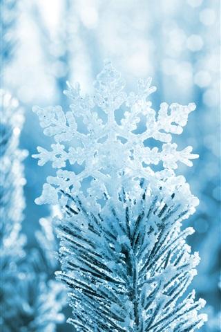 Обои и картинки про зиму на заставку телефона - самые красивые 17