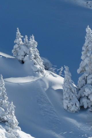 Обои и картинки про зиму на заставку телефона - самые красивые 18