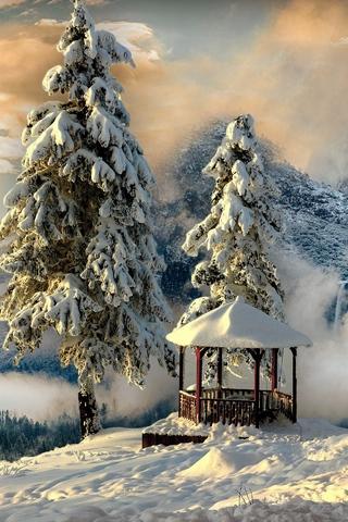 Обои и картинки про зиму на заставку телефона - самые красивые 2