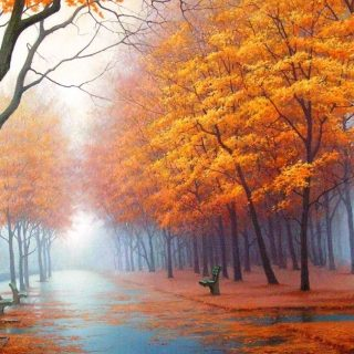 Осенние листья картинки на телефон - самые красивые и прикольные 21