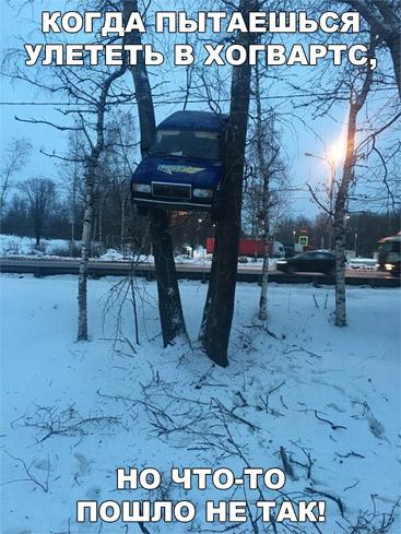 Смешные и забавные картинки про зиму и снег - подборка 10