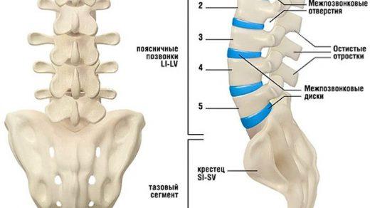 Грыжи позвоночника – что это такое Диагностика, симптомы, лечение 2