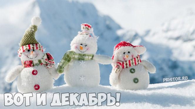Картинки Вот и декабрь!, Зима пришла - самые прикольные 3