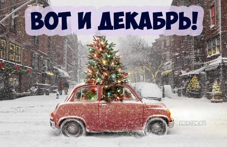 Картинки Вот и декабрь!, Зима пришла - самые прикольные 8