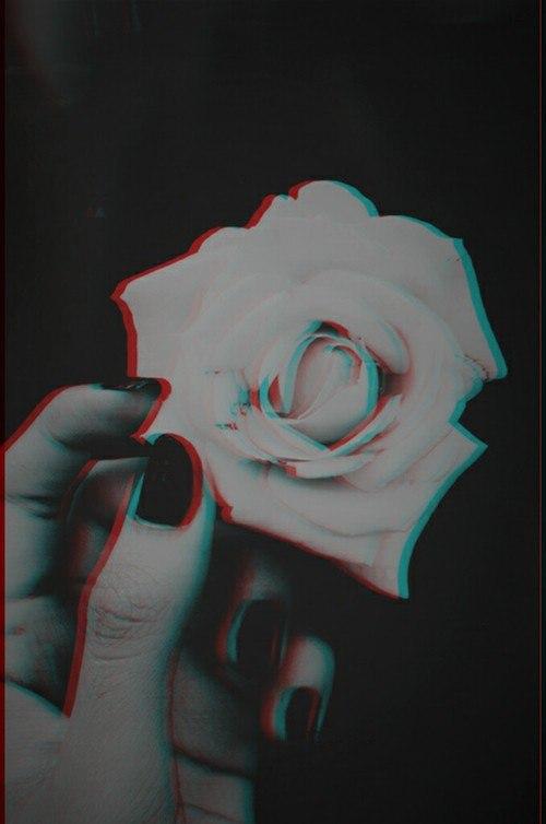 Картинки и фотки на аву розы красивые - подборка аватарок 10