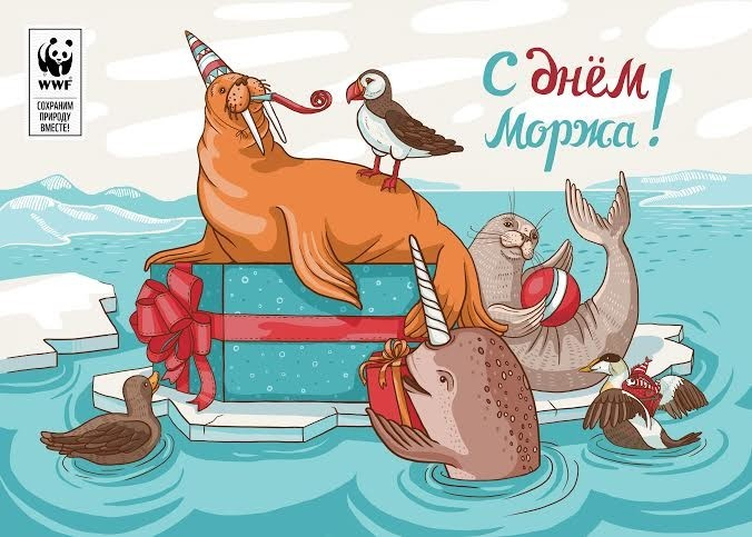 Красивые картинки и открытки с Днем Моржа - приятные поздравления 4