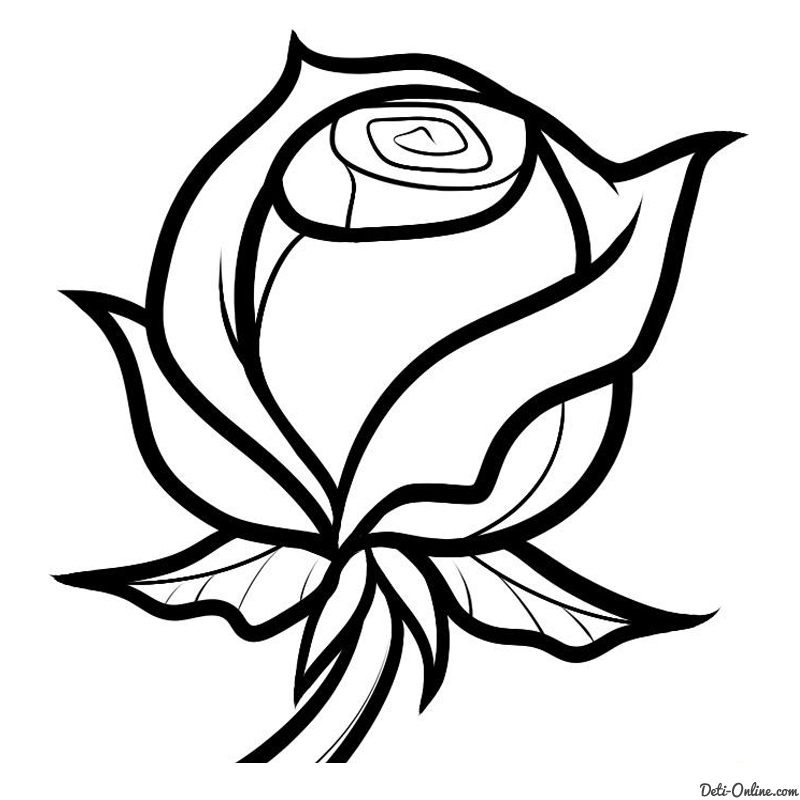 Красивые картинки и рисунки розы для детей - прикольная подборка 4