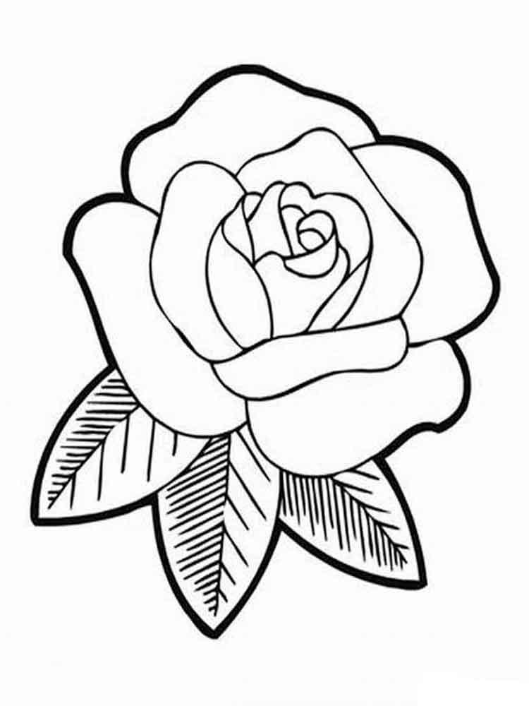 Красивые картинки и рисунки розы для детей - прикольная подборка 9