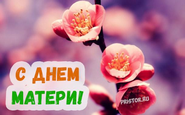 Красивые картинки, открытки с Днем Матери - приятные поздравления 8