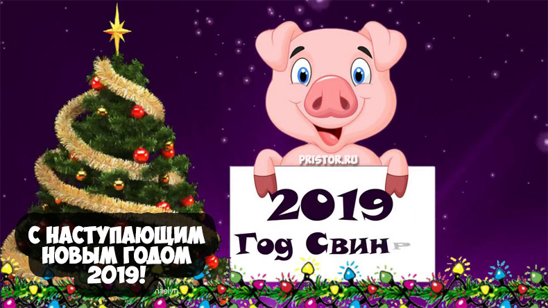 Красивые картинки с Наступающим Новым Годом 2019 - подборка 10