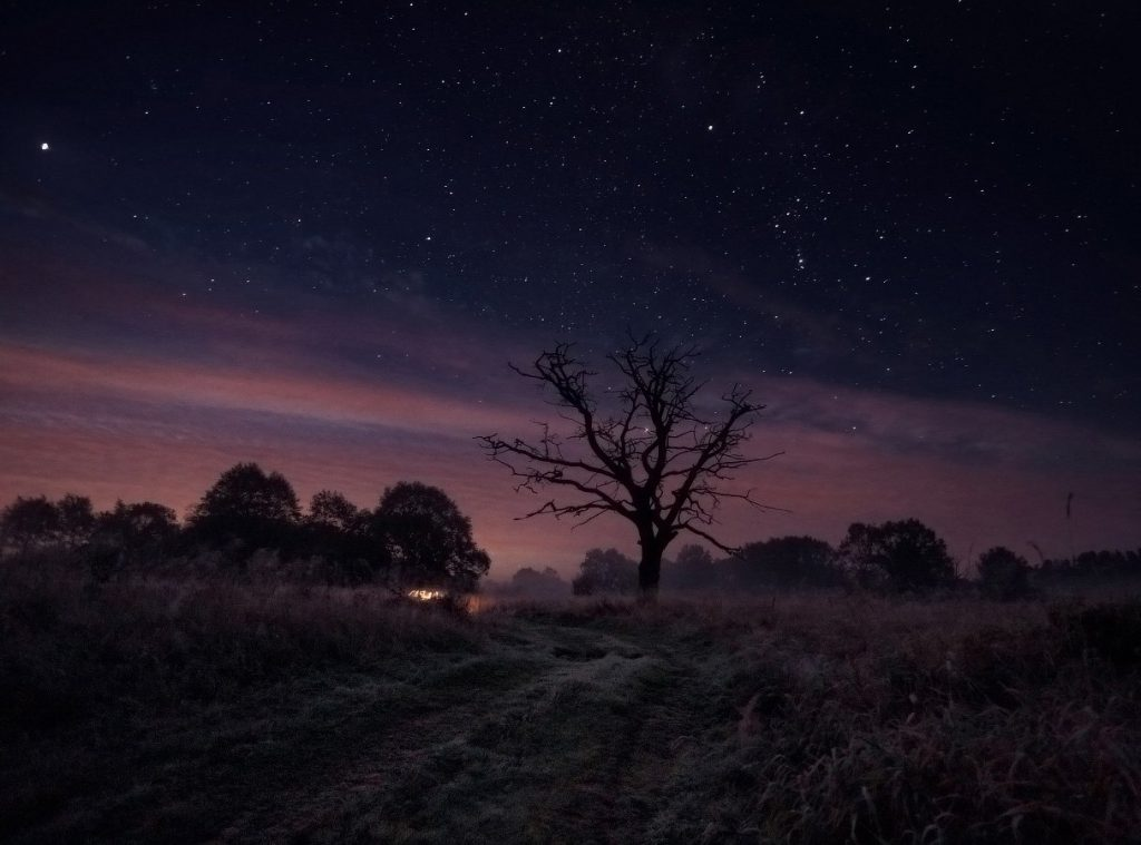 Осенняя ночь картинки и фотографии - очень красивые 10