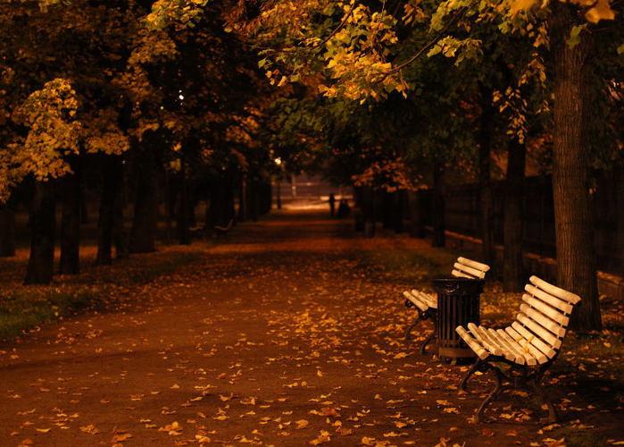 Осенняя ночь картинки и фотографии - очень красивые 3