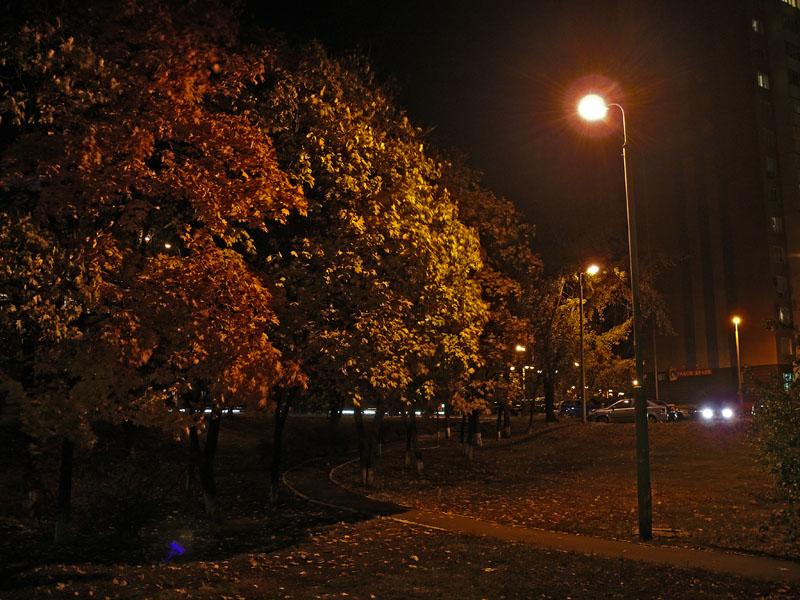 Осенняя ночь картинки и фотографии - очень красивые 9
