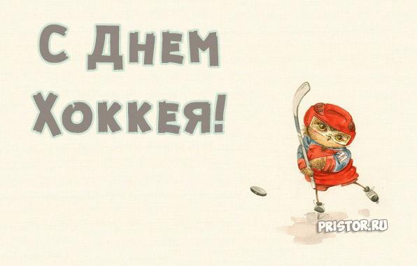 Прикольные картинки поздравления с Днем Хоккея - лучшие открытки 10