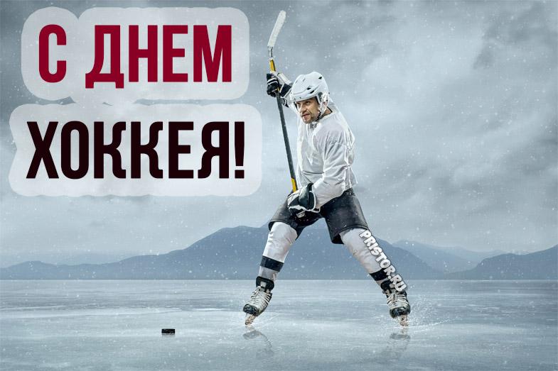Прикольные картинки поздравления с Днем Хоккея - лучшие открытки 3