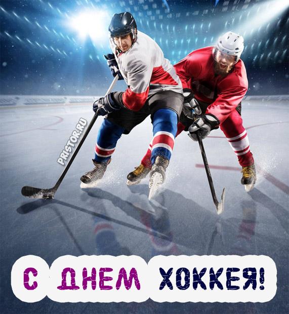 Прикольные картинки поздравления с Днем Хоккея - лучшие открытки 5