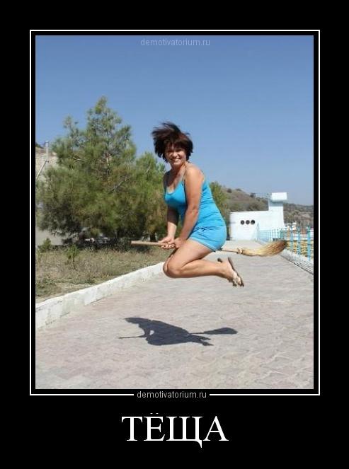 Смешные и веселые картинки про тещу и зятя с надписями - подборка 20
