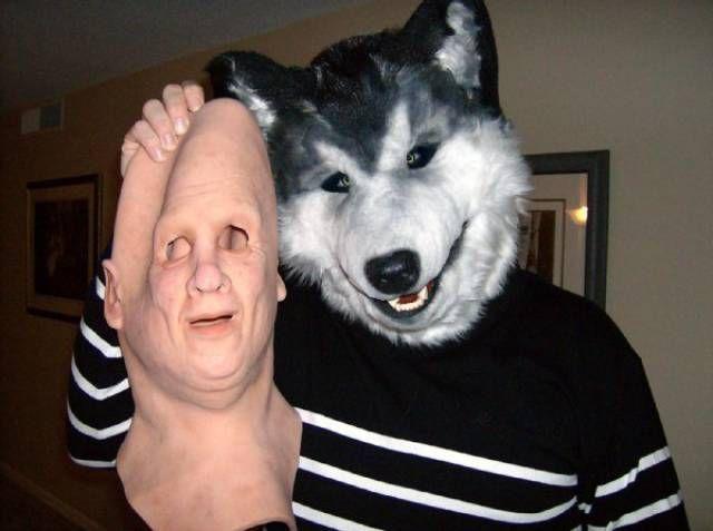 Смешные фотографии и картинки про зверей, животных до слез 15