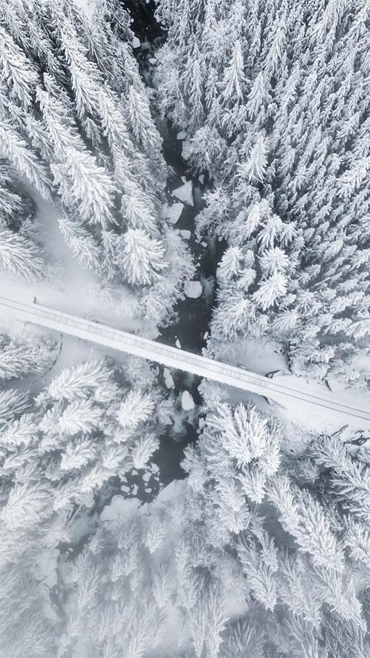 Удивительные картинки на заставку телефона Зима - подборка 15