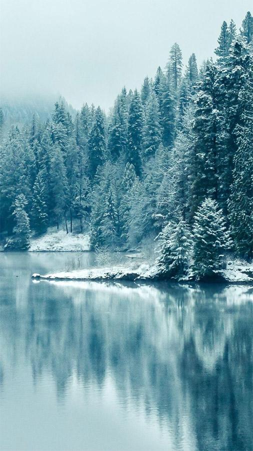 Удивительные картинки на заставку телефона Зима - подборка 3