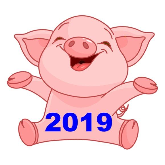 Интересные и прикольные картинки, фото свиньи на Новый год 2019 8