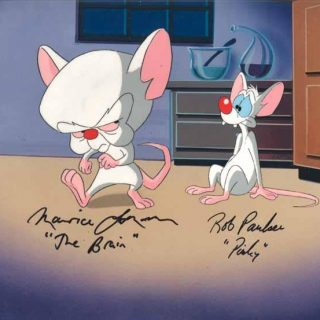 Картинки и фото Пинки и Брейн из мультфильма - подборка 20 штук 10