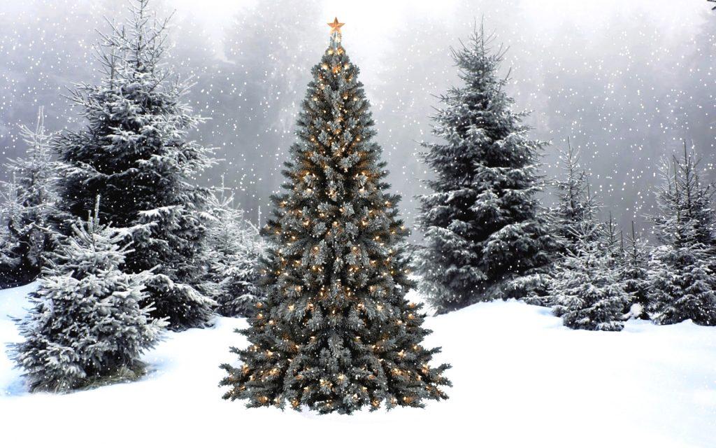 Картинки про новый год и зиму - самые удивительные и красивые 11