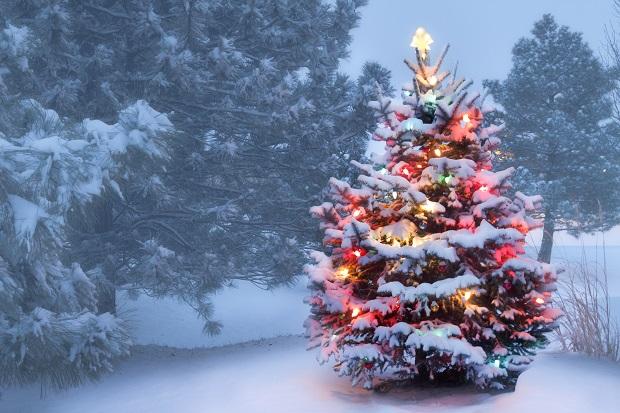 Картинки про новый год и зиму - самые удивительные и красивые 14