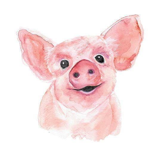 Красивые и прикольные картинки на тему Новогодняя свинья - сборка 14